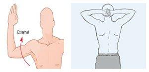 Shoulder Abduction + External Rotation